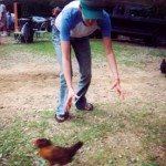 """How """"Chasing Chickens"""" Can Help You Succeed at Network Marketing"""